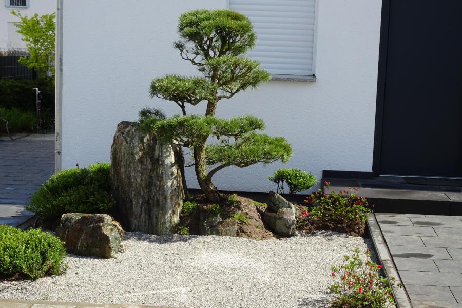 Zengarten Bei Frankfurt Japanese Garden Small Japanese Garden Japanese Garden Landscape