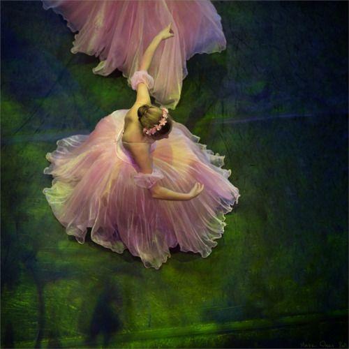 el color de la danza