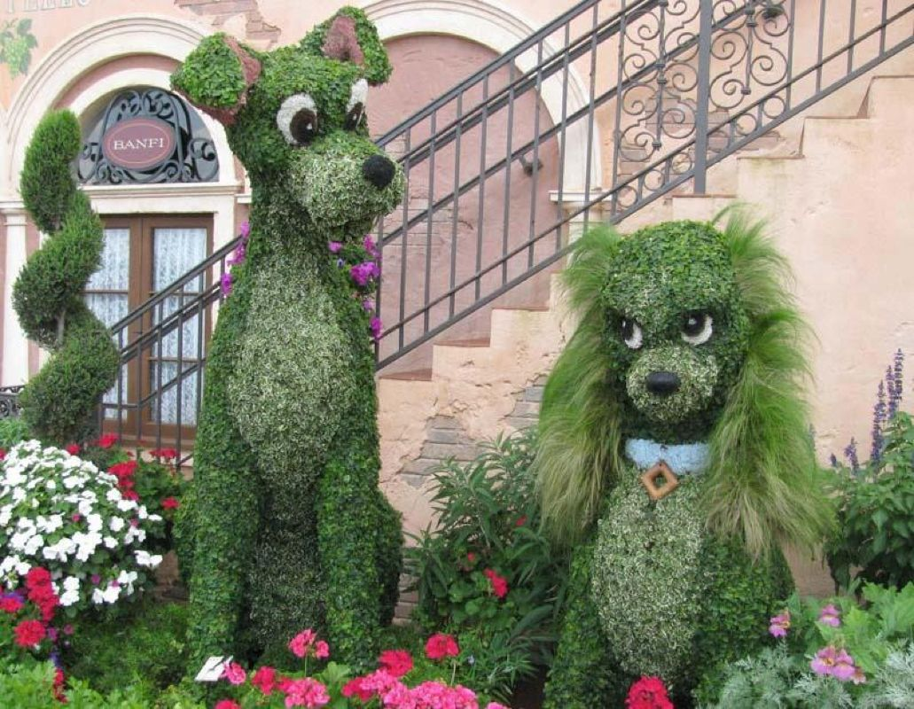 L\'amore nel giardinaggio | Topiaries | Pinterest | Topiary, Flowers ...