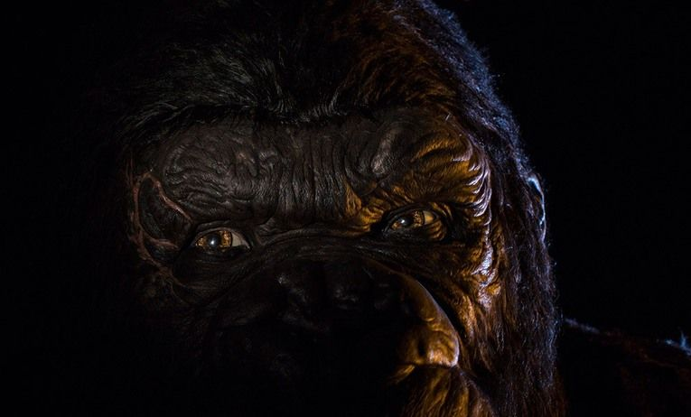 Skull Island: Reign of Kong Universal's Islands of Adventure