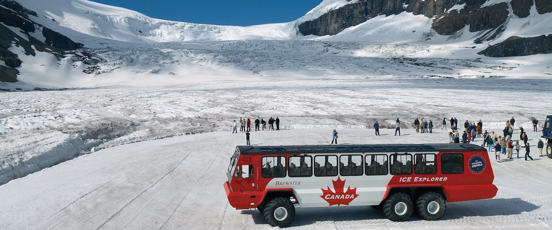 Columbia Icefields Parkway Tour | Discover Banff Tours | Banff, How to take  photos, Scenic drive