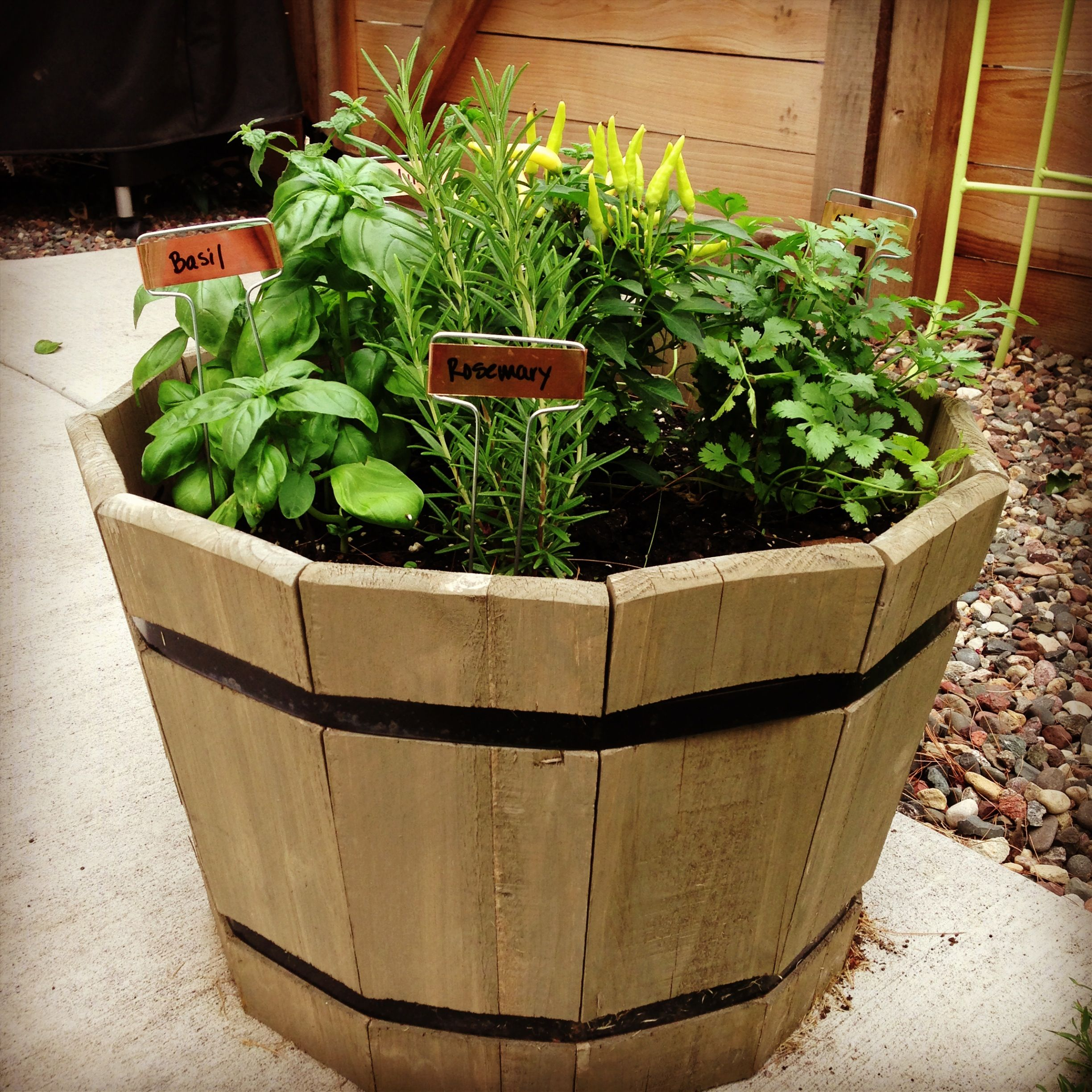 Container herb garden stuff to do pinterest for Patio herb garden designs containers