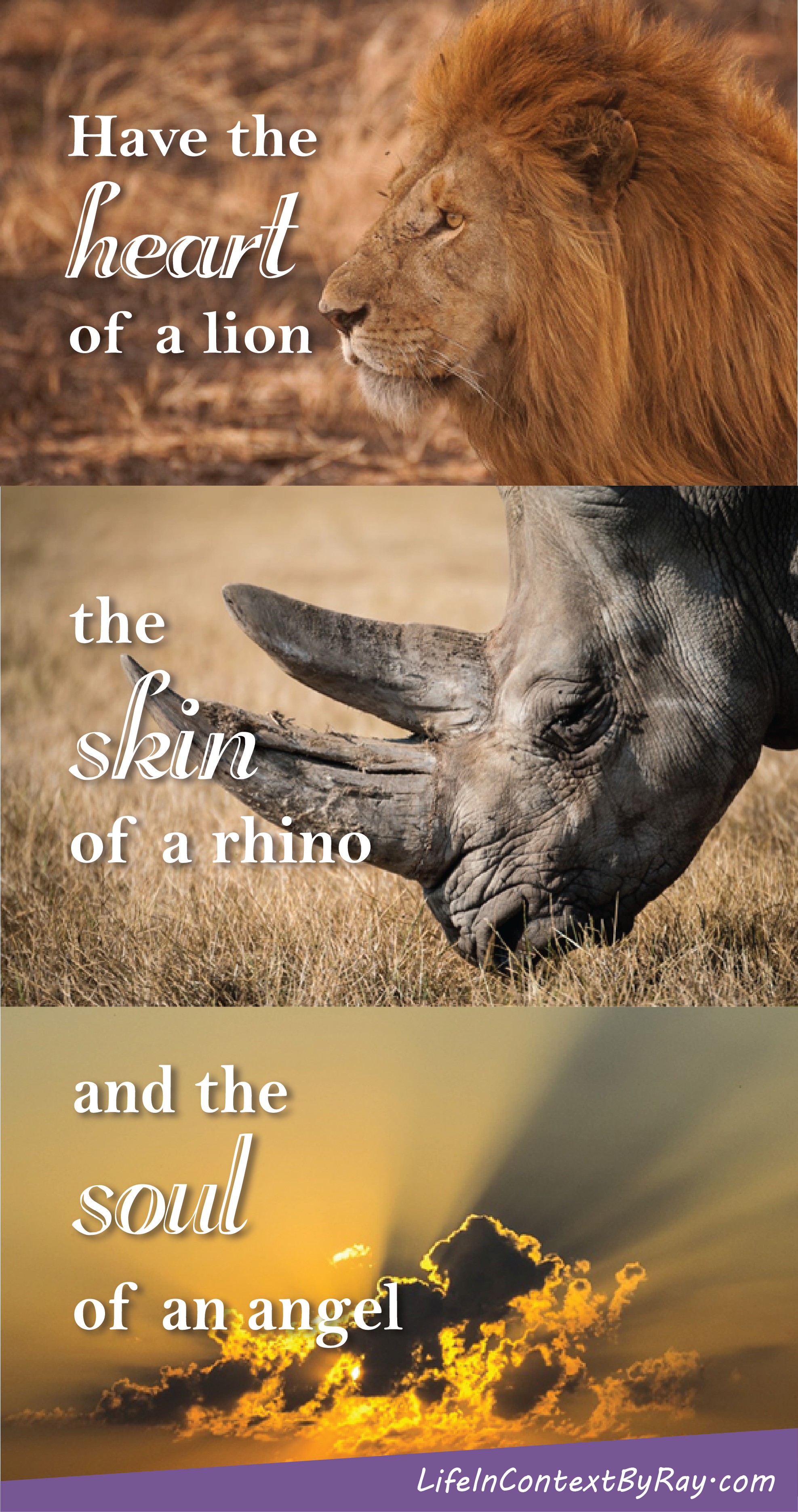 Have The Heart Of A Lion The Skin Of A Rhino And The Soul Of An
