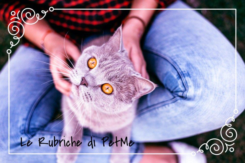 PetMe Istruzioni per l'uso In caso di imprevisto cosa