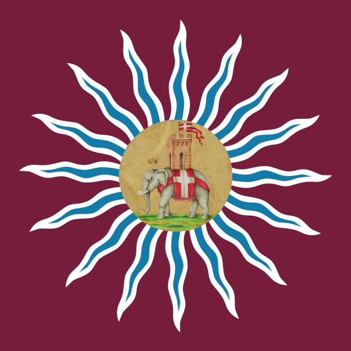 la bandiera della contrada della torre