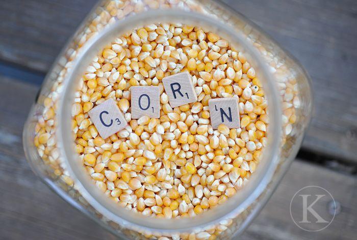 Fun corn 'sensory bin' idea!