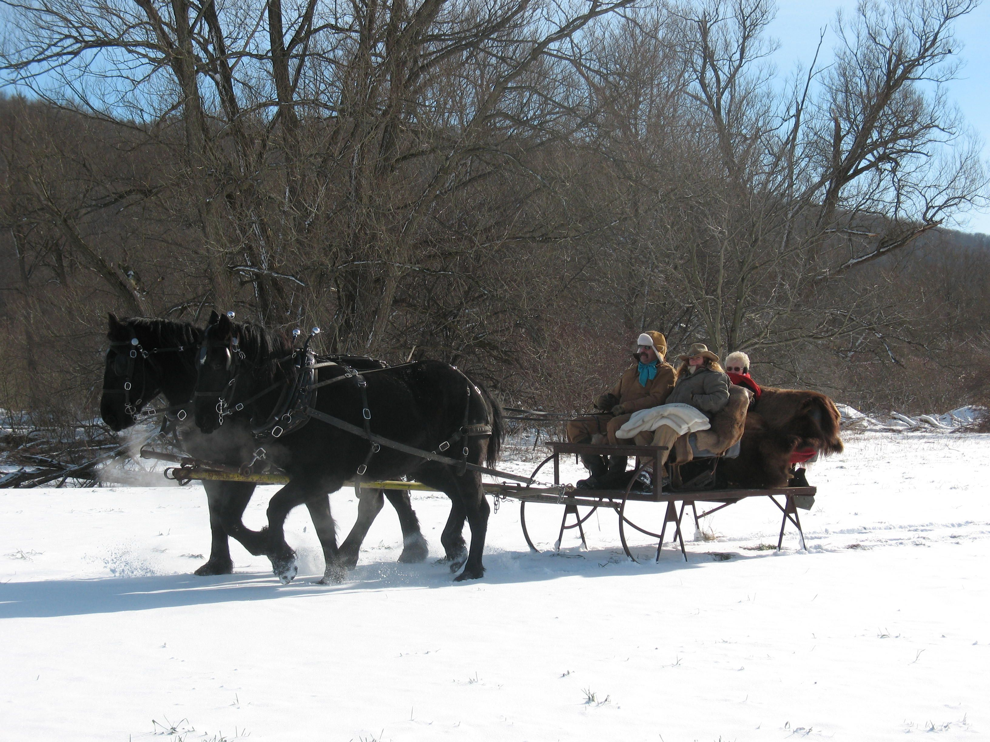 Go for a charming horse drawn sleigh ride with the