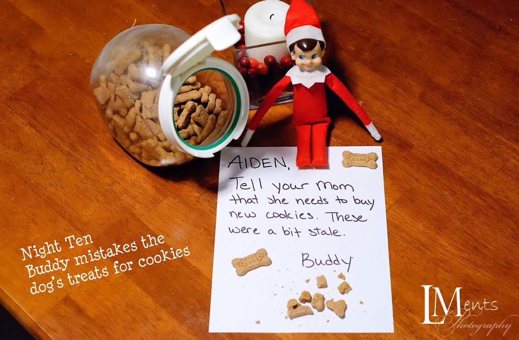 Elf on the Shelf tried to eat a dog biscuit thinking it was a cookie....Yuck!!
