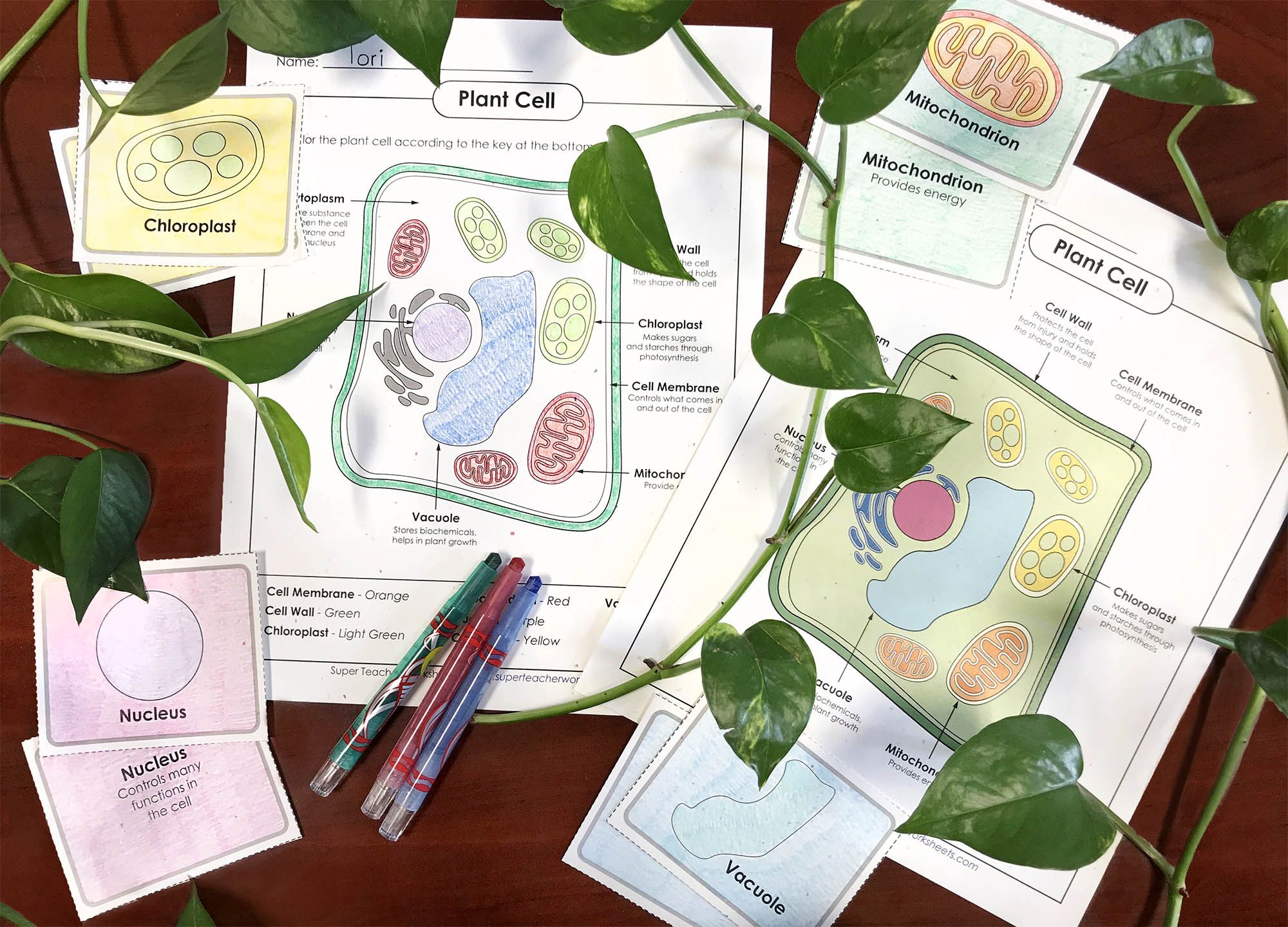 Plant Seeds Of Knowledge With Printable Resources On