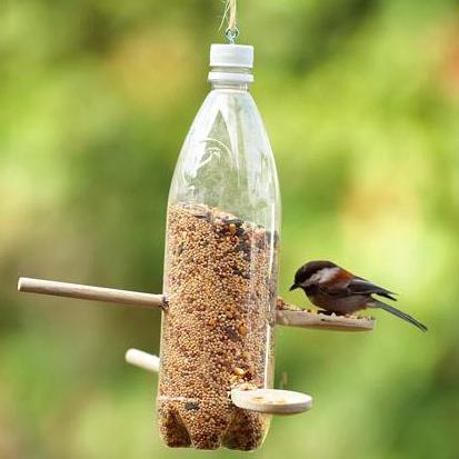 Recicla Y Consiente A La Naturaleza Con Un Semillero Para Aves Reciclaje De Botellas Plasticas Comederos Para Pajaros Comederos Para Aves
