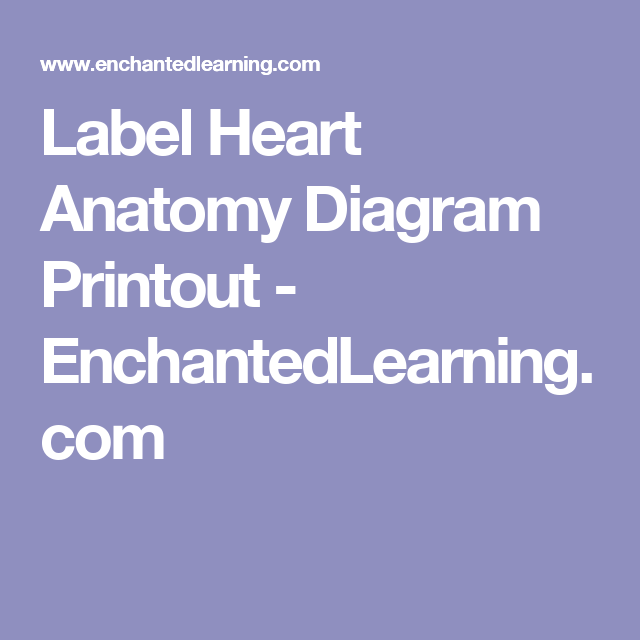 Label Heart Anatomy Diagram Printout - EnchantedLearning.com | Heart ...