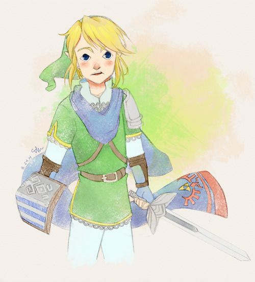Hyrule Warriors | The Hero Link