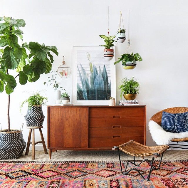 Boho Eclectic Living Room With Mid Century Decor And Plants