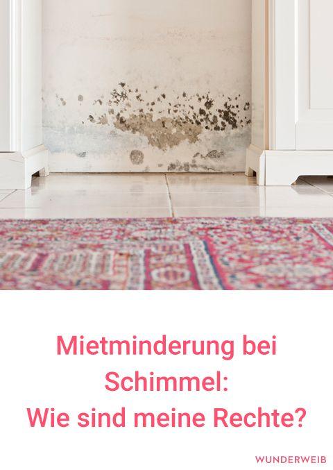 mietminderung bei schimmel wie sind meine rechte als mieter. Black Bedroom Furniture Sets. Home Design Ideas