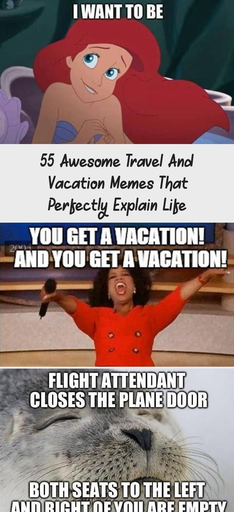 55 Awesome Travel And Vacation Memes That Perfectly