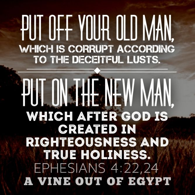 Put Off The Old Man; Put On The New Man   Scripture quotes, Bible devotions, New man