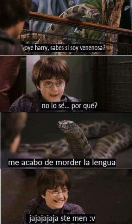 Photo Video Whatsapp Harry Potter Memes Hilarious Harry Potter Memes Funny Memes