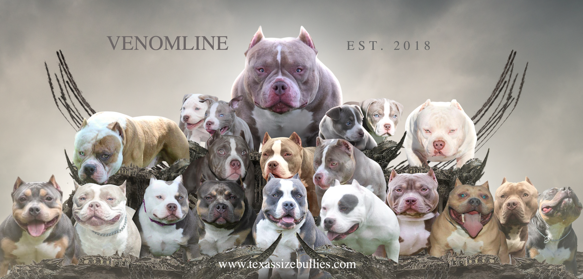 Venomline Discusses The Best Dog Foods Supplements Training For