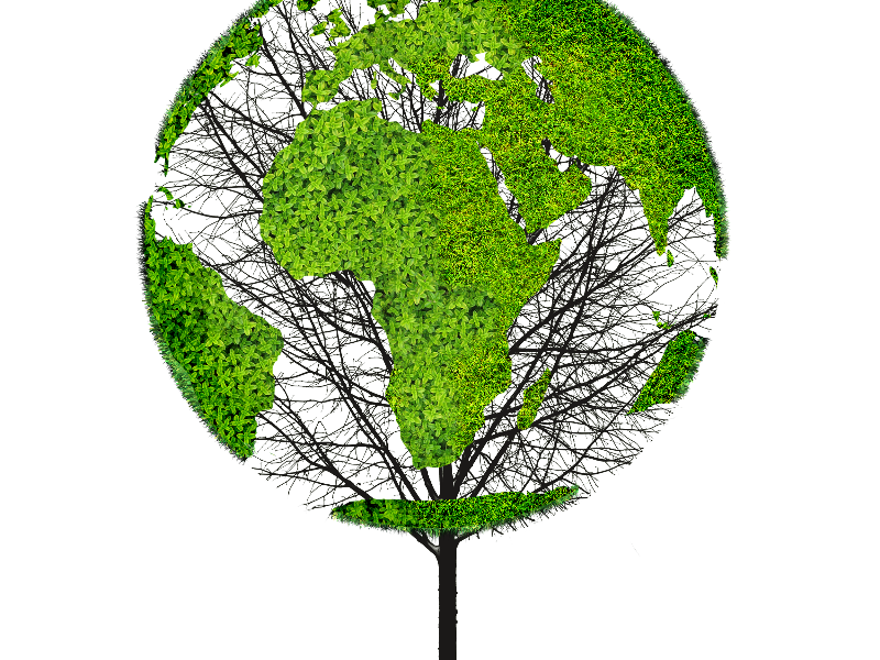 Earth world map green tree png object for photoshop things to wear earth world map green tree png object for photoshop gumiabroncs Choice Image