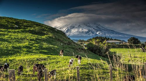 Mt. Egmond, New Zealand In the country by Edwin Leung