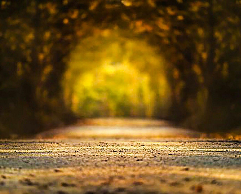 Pin By Gaurav Kanade On Gk Best Background Images Background Images Picsart Background