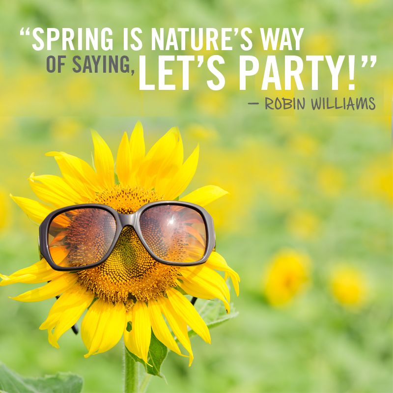 Spring Is Nature S Way Of Saying Let S Party Quotable Quotes Inspiration Persistence Healthyhome Tree Service Trees To Plant Tree Care