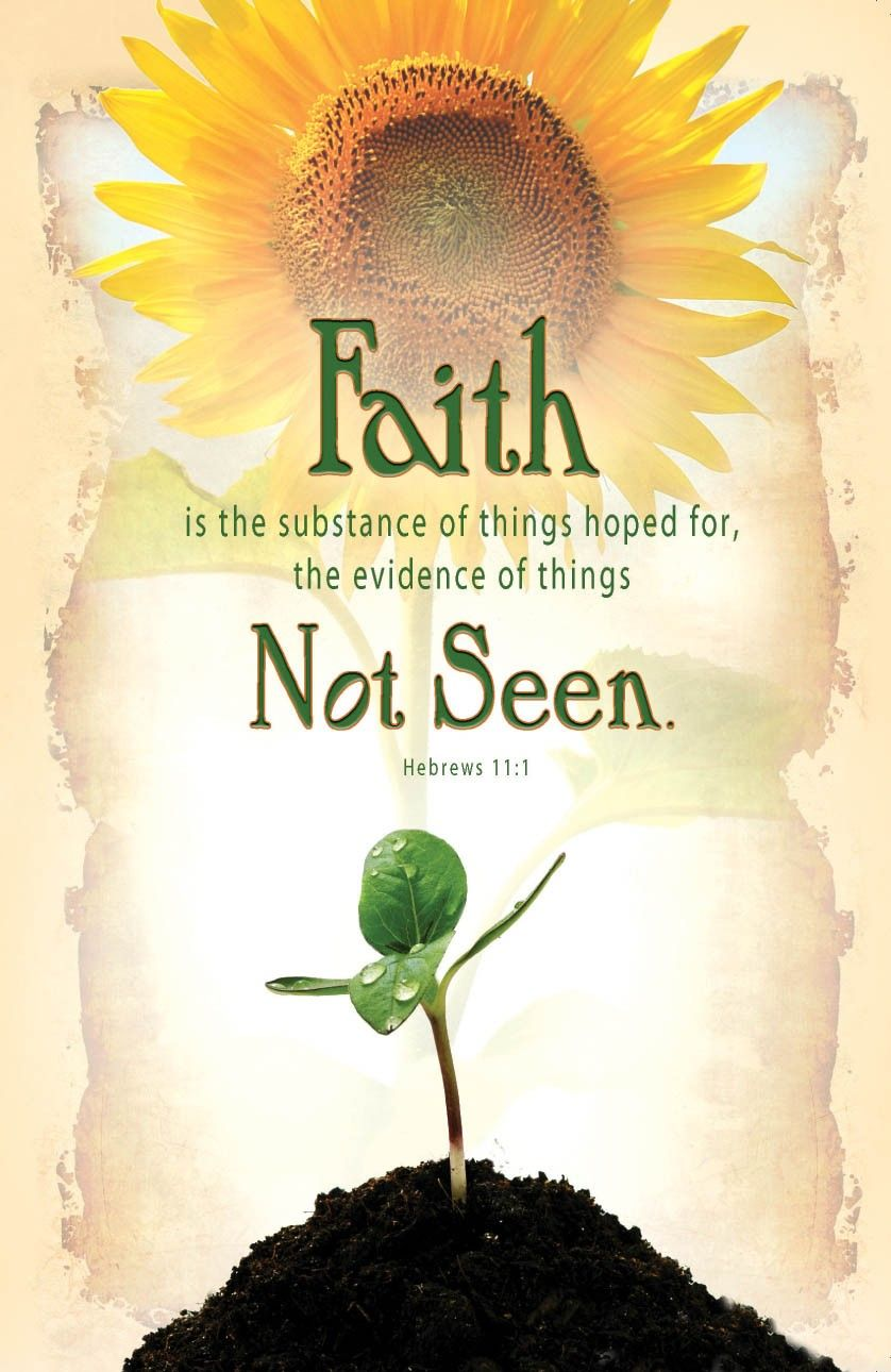 Image result for kjv bible verse sprout""