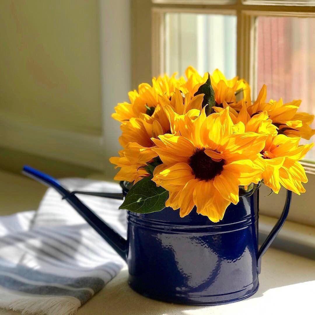 Good Morning Sunshine Cratestyle Robyngutowski Shoplinkinbio Home Flowers Sunflower Arrangements Flower Arrangements