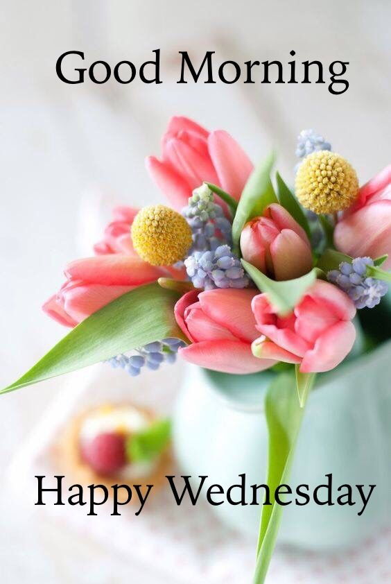Happy Wednesday Images, Good Morning Wednesday Quotes Messages