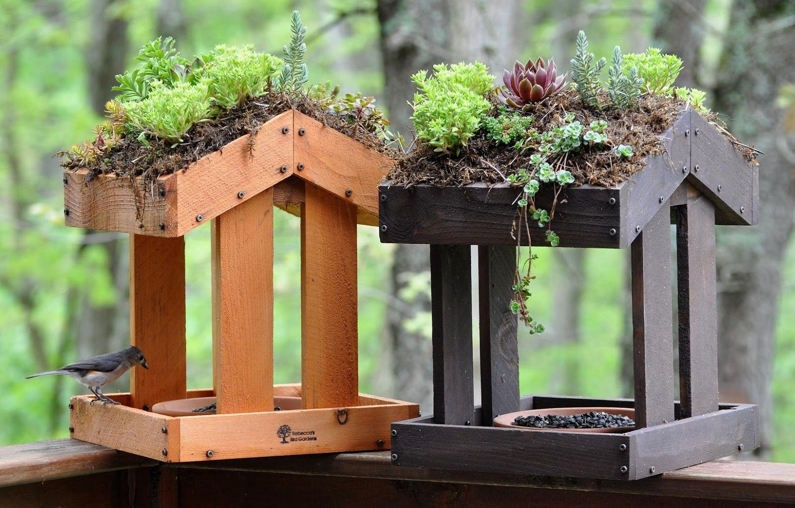 ee913963b721e2faad4a1ccda5659872 - Better Homes And Gardens Bird House
