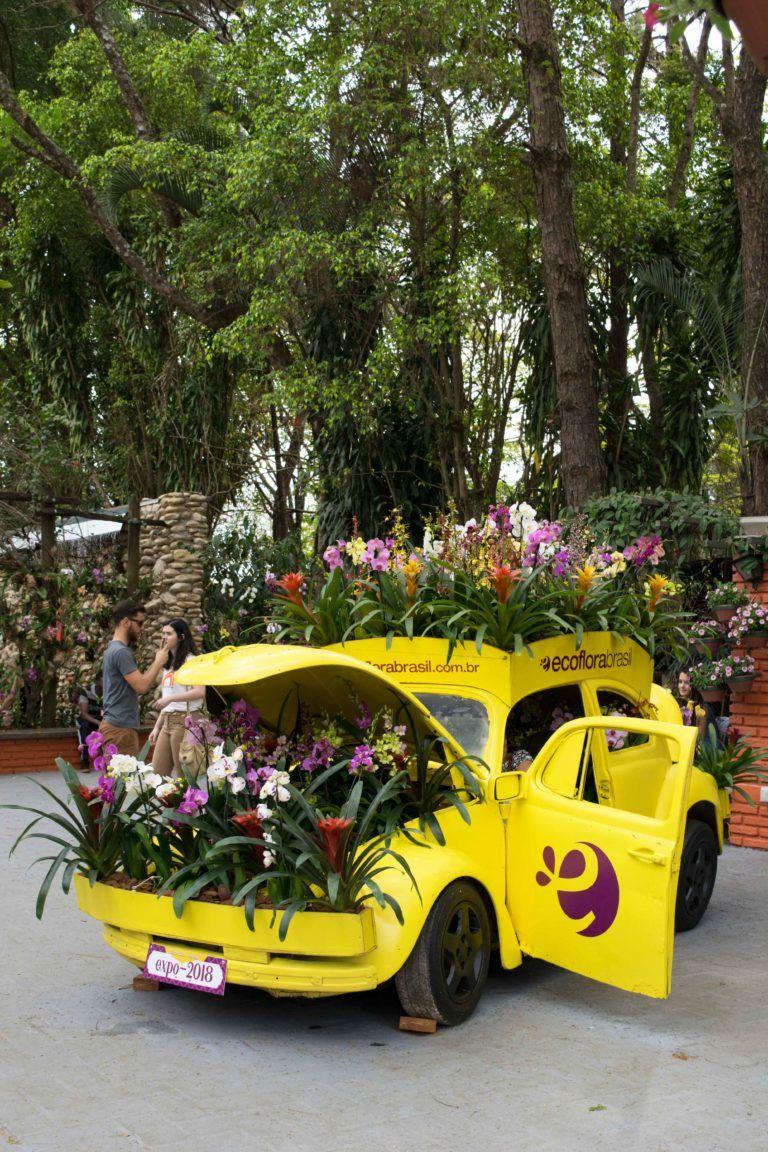 Visite A Expoflora Em Holambra Cidade Das Flores Cidade