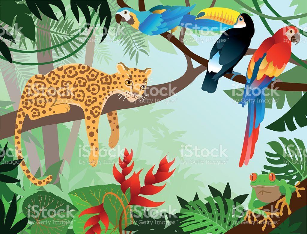 Amazona Jungle With Wild Animals In 2020 Jungle Illustration
