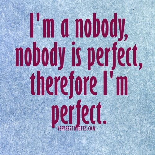 Nobody Is Good Sometimes Nobody Is Perfect Quotes Perfection Quotes Picture Quotes