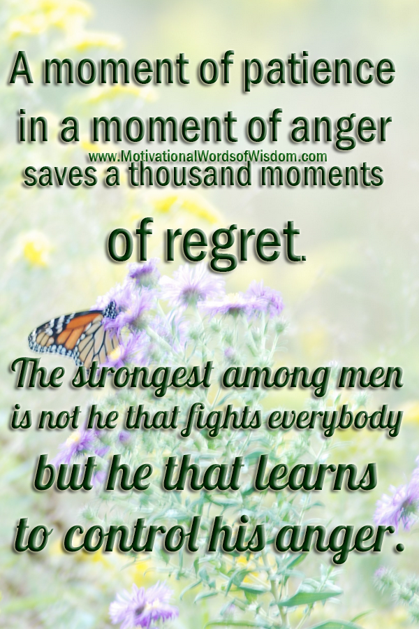 SELF-CONTROL QUOTES: The strongest among men is not he that fights everybody but he that learns to control his anger.