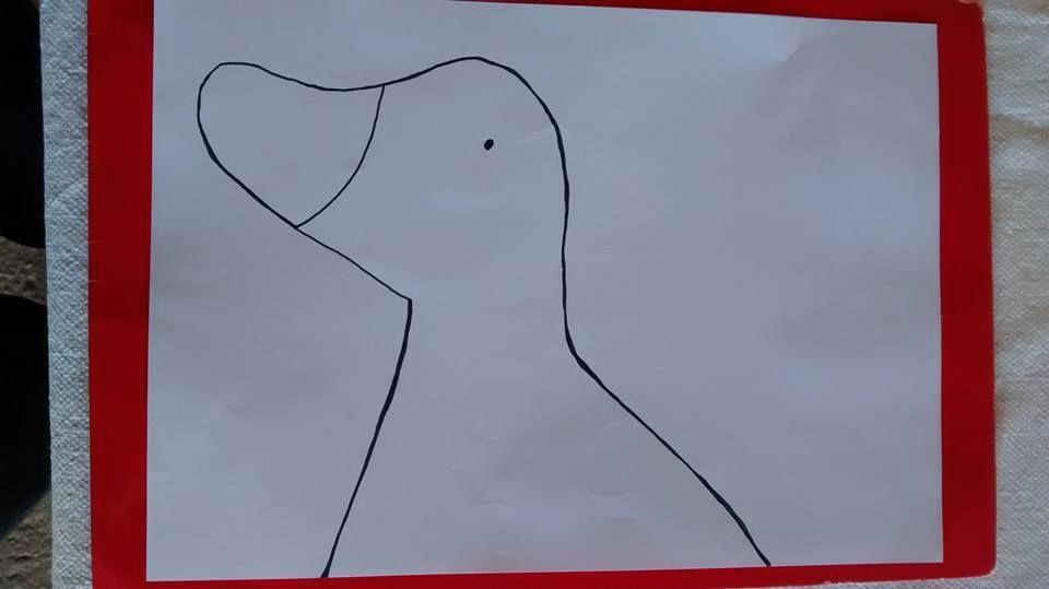Patos (1)