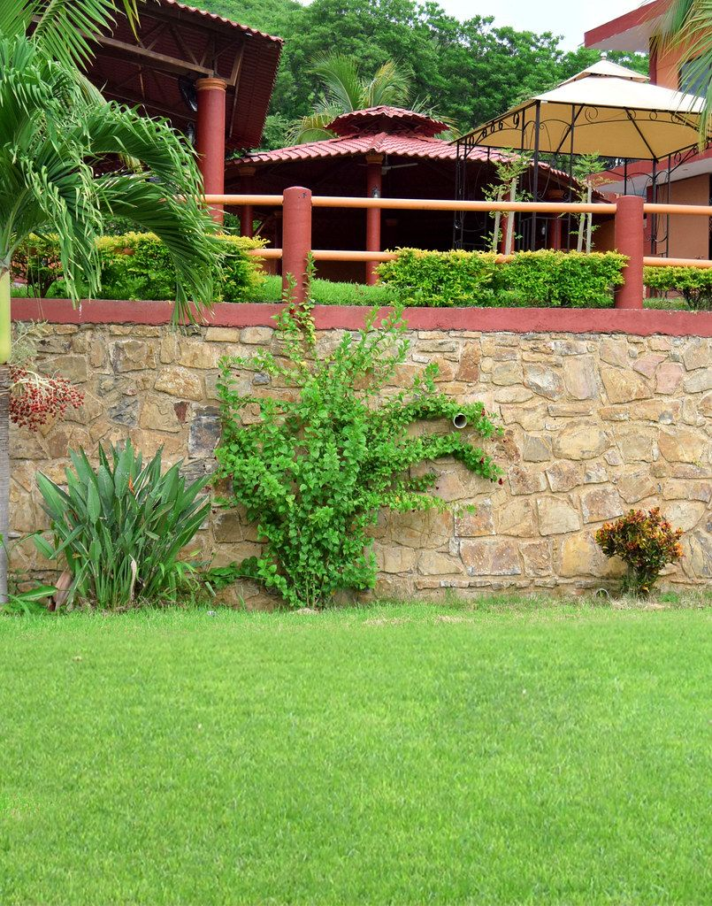lawn-care-mowing-services-near-me-in-Benicia in 2020 ... on Backyard Landscaping Companies Near Me id=22235