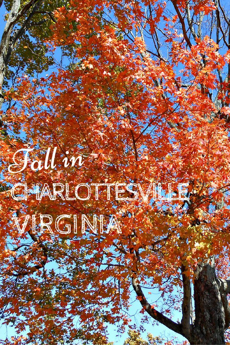Sightdoing Take Your Sightseeing To The Next Level Charlottesville Virginia Virginia Is For Lovers Virginia Fall