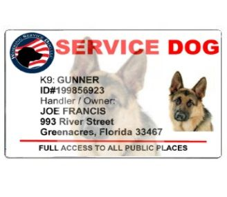 Service Dog Card Template Awesome Custom K9 Cards Dog Cards Id Card Template Card Template