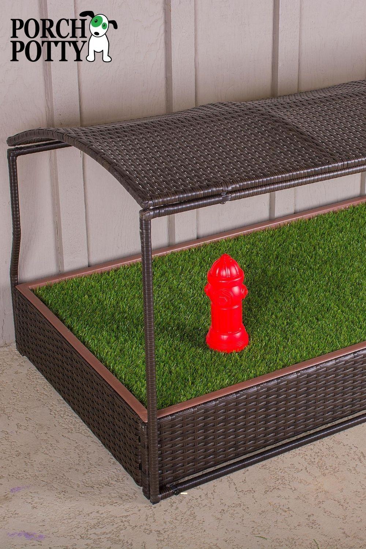 Porch Potty Canopy in 2020 Porch potty, Potty, Dog bed