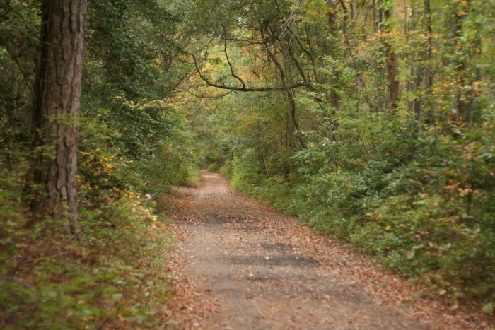 11 Easy Hikes To Add Your Outdoor