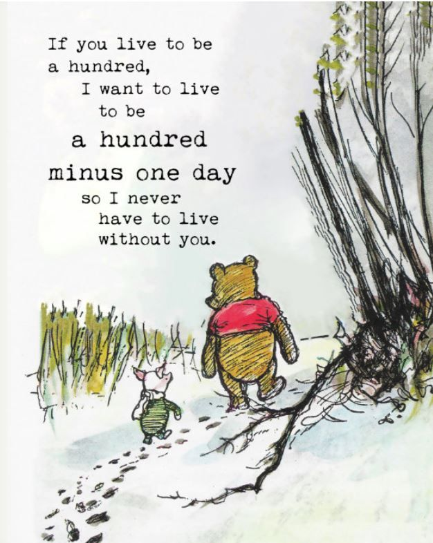 35 Winnie The Pooh Quotes for Every Facet of Life #bear