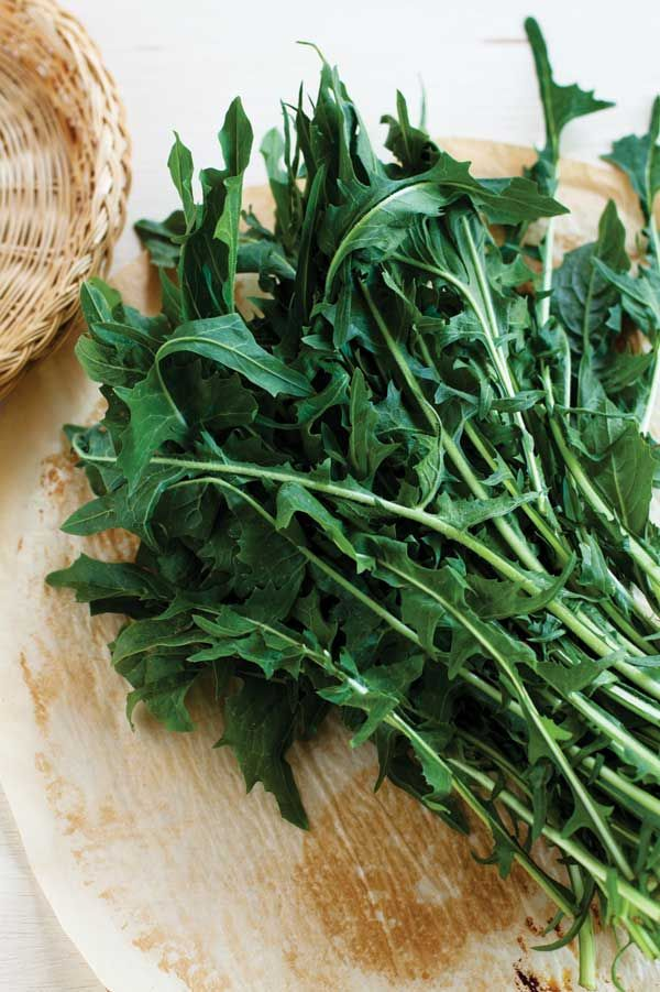 The Benefits Of Dandelion Greens Food And Recipes Mother Earth Living Dandelion Benefits Tomato Nutrition Healthy