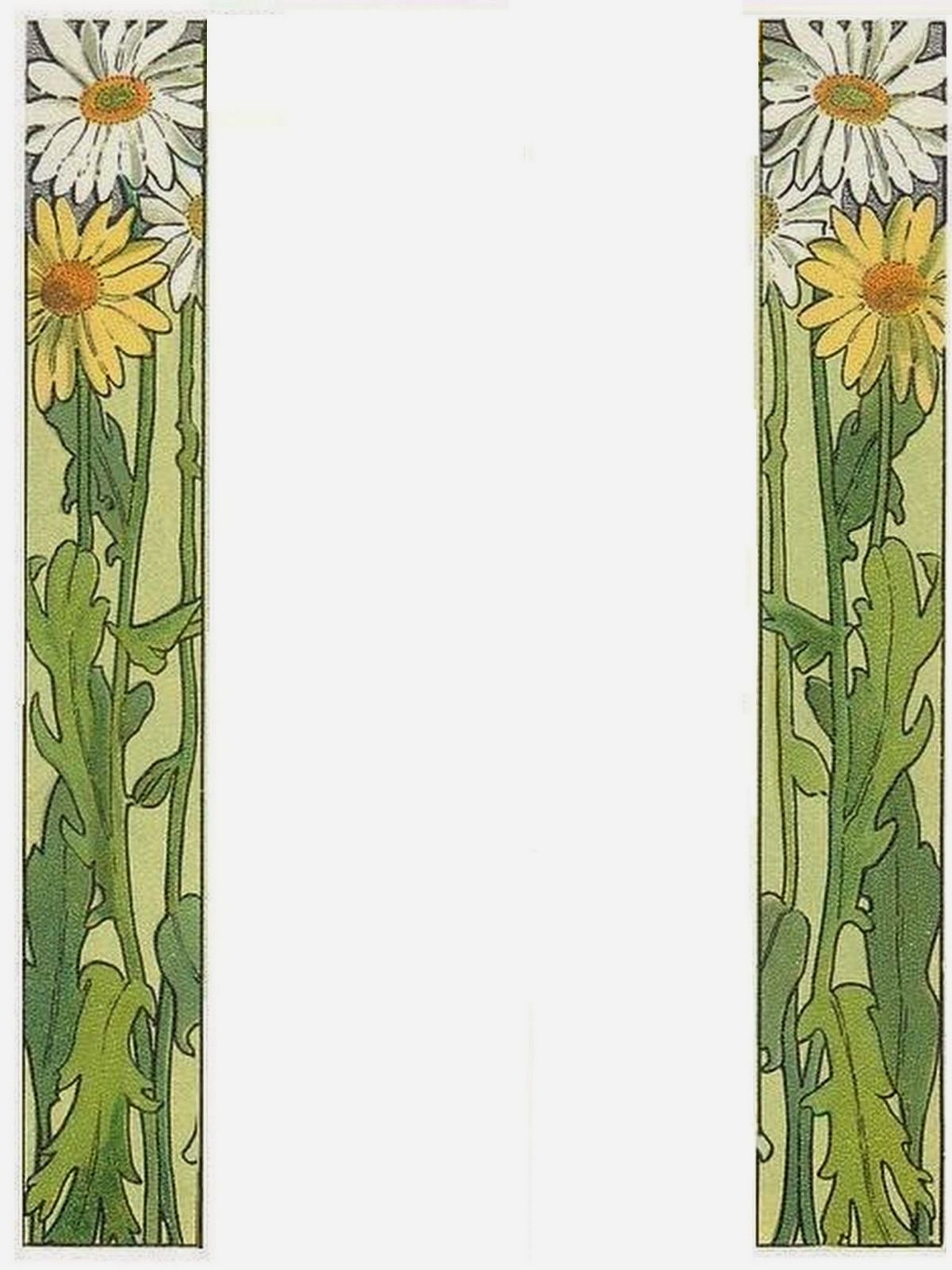 bumble button daisy the birth flower for the month of april