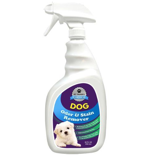 Dog Odor And Stain Remover Best Dog Urine Odor Remover And Neutralizer Helps Prevents Re Soiling When Housebreaki Dog Urine Odor Remover Dog Odor Dog Urine