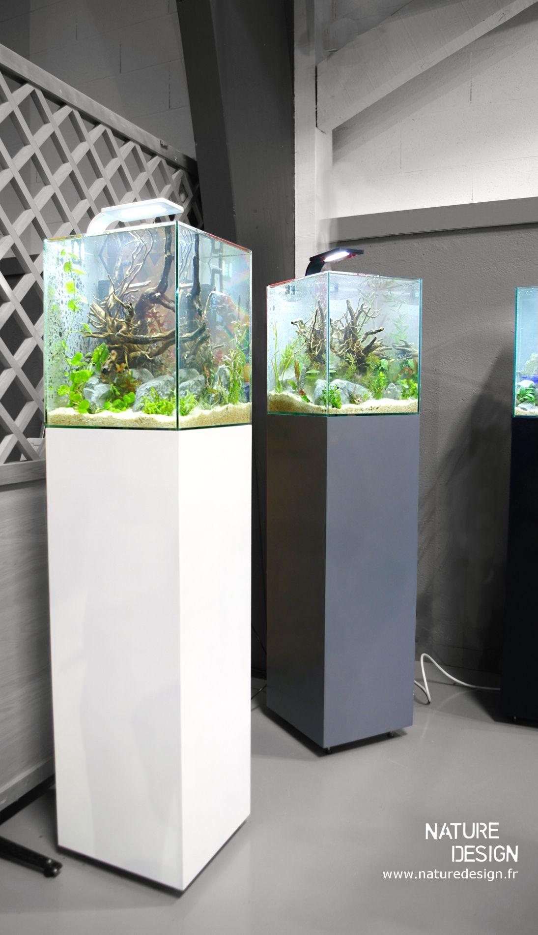 nano aquarium design 30l aquariums pinterest aquarium aquarium poisson et poisson. Black Bedroom Furniture Sets. Home Design Ideas
