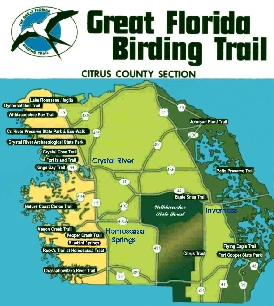 Great Florida Birding Trail Citrus County Section