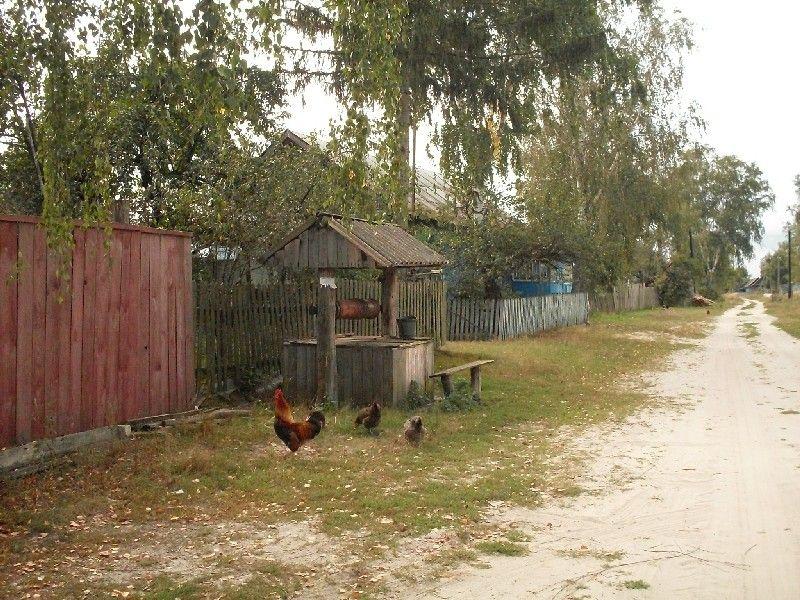 деревенская улица колодец - Поиск в Google