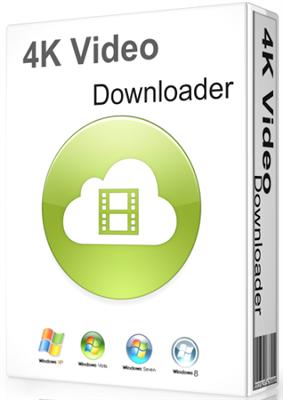 best online 4k video downloader
