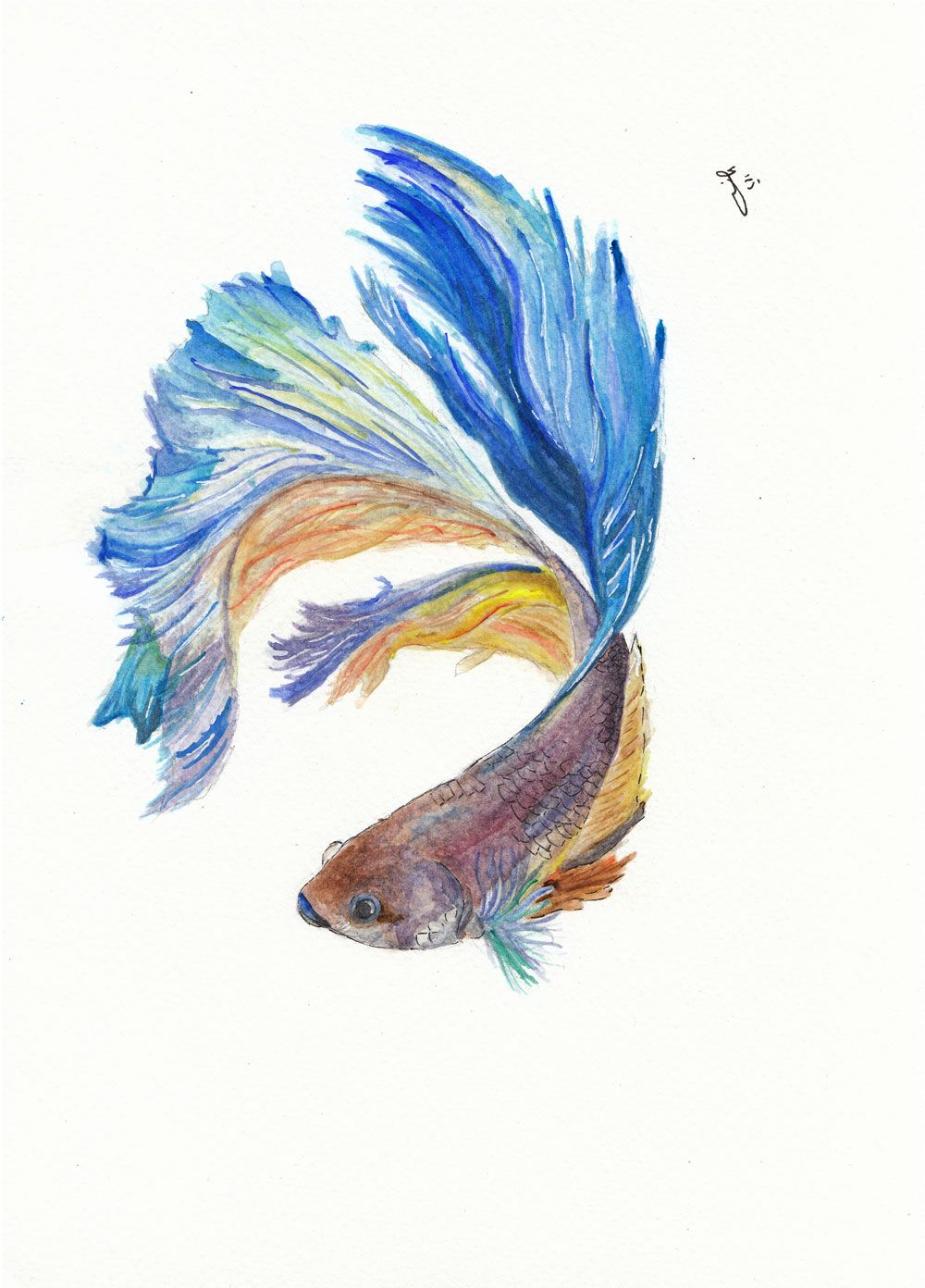 Fighting Fish Watercolor Society6 Com Inkycatstudio Fish Art Watercolor Fish Betta Fish Tattoo