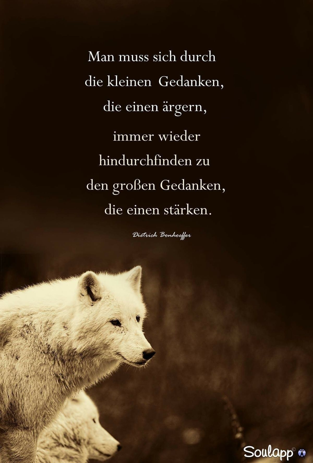 Pin Von Wolff Josiane Auf Spiri Weisheiten Zitate
